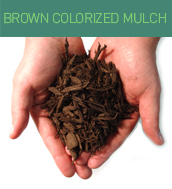 brown_colorized_mulch