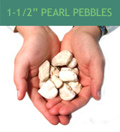 1-1/2 inch Pearl Pebbles