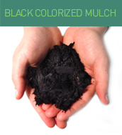 black_colorized_mulch